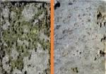 Применение диффузионных покрытий для управления коррозионно-усталостными свойствами биорезорбируемых магниевых сплавов